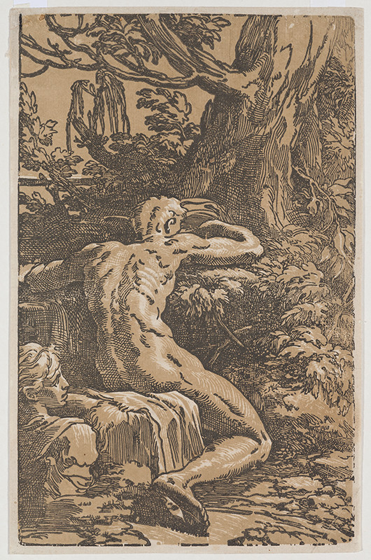 Antonio da Trento, Francesco Mazzola (called Parmigianino) - Narcissus and Echo