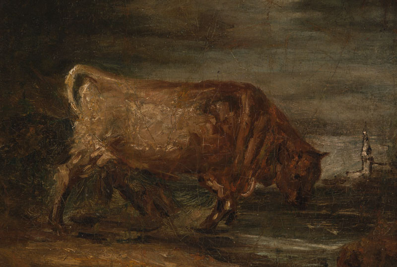 Karel Purkyně - A Bull in the Bog