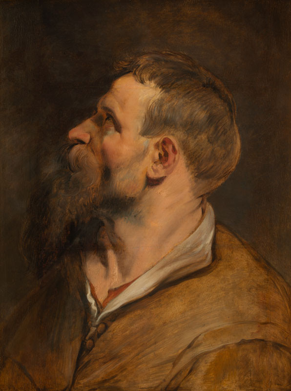 Peter Paul Rubens - Study of a Man in Profile